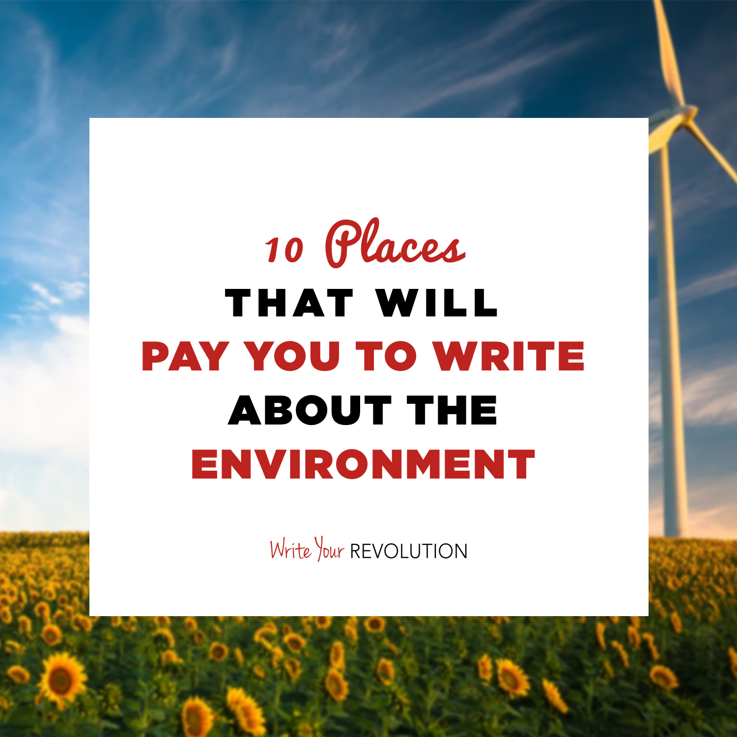 10 Places That Will Pay You to Write About the Environment